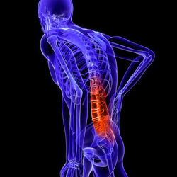 injury-spinal-column